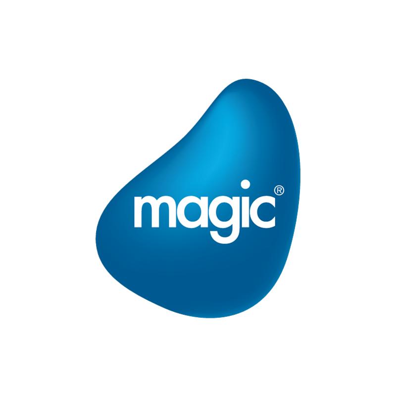 magic software japan